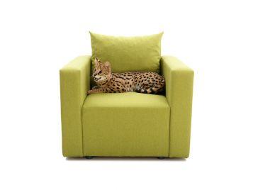 Кресло Оболонь №586 Platinum фото 3 — интернет-магазин Диван Киев
